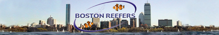 Boston Reefers Society