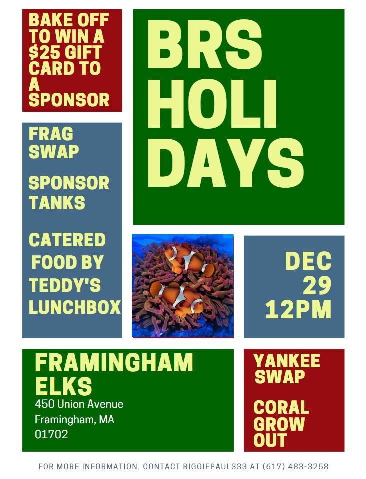 Simple December Forum Flyer.JPG