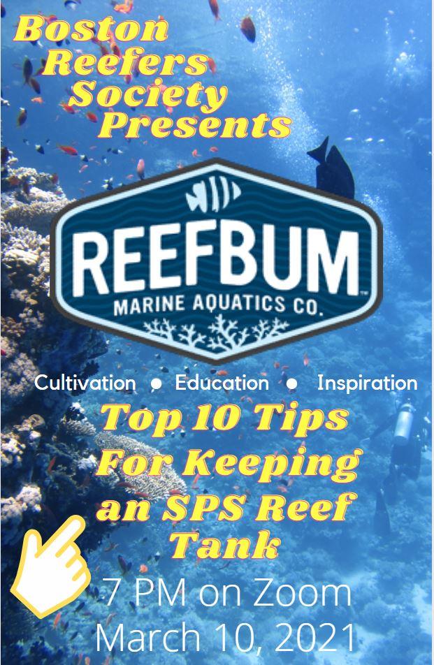 ReefBum Flyer.JPG