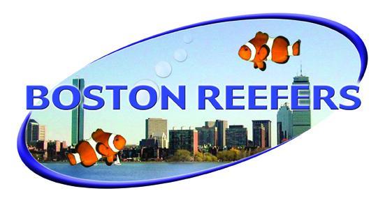 reeflogowithskylinelo-res.jpg